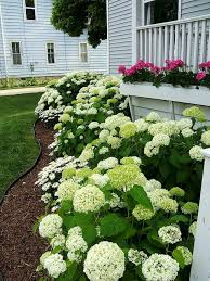 Front Yard Landscaping Ideas Pictures by Top 25 Best Cottage Front Yard Ideas On Pinterest Cottage