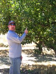 apple picking part 1 leah u0027s thoughts leah u0027s thoughts