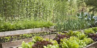 Planning A Garden Layout Free 16 Free Garden Design Ideas And Plans