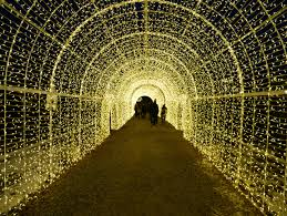 vancouver christmas light maze enchant a christmas light maze memoirs of a time here after