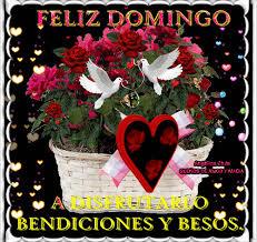 imagenes de amor para el domingo sueños de amor y magia feliz domingo