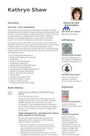 Sample Cfo Resumes by Download Cto Resume Examples Haadyaooverbayresort Com