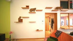 cat flats designing human apartments for feline friends cnn style