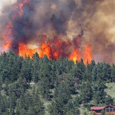 Wildfire Containment by Cold Springs Fire Reaches 80 Percent Containment Fox21news Com