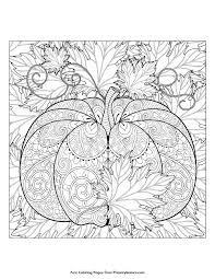 autumn coloring page sheets coloring in fancy autumn coloring page