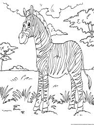 70 big images coloring books animal