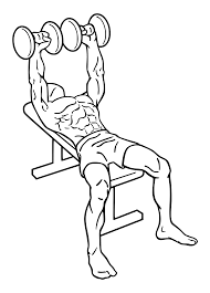 file bench press dumbbell 1 svg wikimedia commons