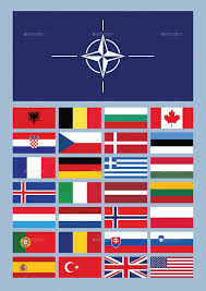 All The States Flags Nato By Emird Graphicriver