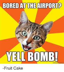 Fruitcake Meme - bored at the airport yell bomb com fruit cake bored meme on me me