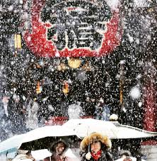 november tokyo tokyo has first snow in november since 1962