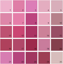 pink paint colors benjamin moore paint colors pink palette 11 house paint colors