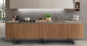 modern eco friendly kitchen with elegant refined style at