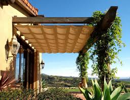 amusing rustic diy outdoor canopy with climbing plants and wall