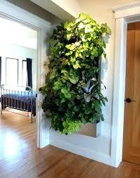 indoor kitchen garden ideas indoor wall planter image for indoor vertical wall garden