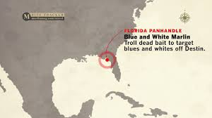 Florida Panhandle Map by Best Fishing Destinations In July For Marlin And Sailfish Marlin