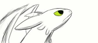 night fury sketch by pandafilmsg on deviantart