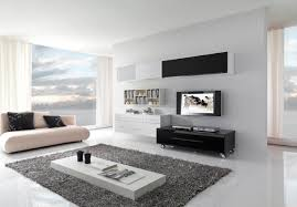 full white theme living room decor with cozy rug sofa and media