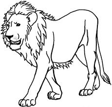 coloring page lion coloring page shimosoku biz