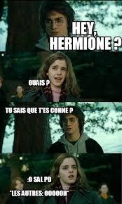 Horny Harry Meme - hey hermione horny harry meme on memegen