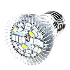 t5 grow light bulbs grow light bulbs lowes unique grow lights at or medium image for