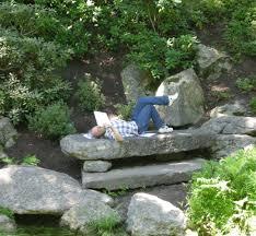 Water Rock Garden by Perky Affordable Rock Garden Ideas As Wells As Flowers Design Rock
