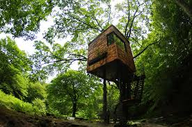 three house the most amazing treehouses from around the sharenator