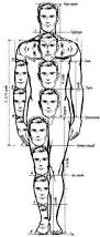 Anatomy Of Human Body Sketches 109 Best Anatomy Images On Pinterest Anatomy Reference Human