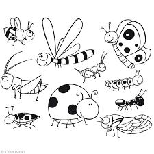 Coloriage Insecte  Les beaux dessins de Nature à imprimer et colorier