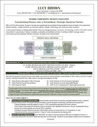 Financial Resume Example by 90 Best Resume Examples Images On Pinterest Resume Examples
