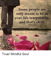 True Life Meme Generator - some people are only meant to be in your life temporarily and that s