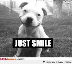 Smile Memes - dog smile funny pic memes and jokes
