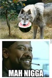 My Nigga Memes - my nigga wolf by bearzle meme center
