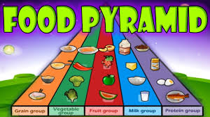 nutrition food pyramid healthy eating educational videos for