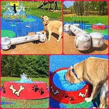 my portable splash pad dog water park backyard splash pad and