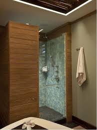stand alone shower bathroom ideas houzz