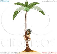 clipart of a castaway climbing a coconut tree royalty free