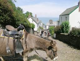 Cottages For Rent In Uk by The Bothy Ref 29469 In Bradworthy Near Bude Devon Cottages Com