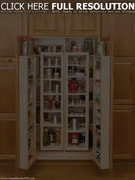 kitchen storage cabinets with doors and shelves tehranway decoration