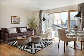 Modern White Rug Splendid Apartment Living Room Interior Design Ideas With