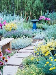 Drought Friendly Landscaping by 261 Best Drought Tolerant Heat Tolerant Images On Pinterest