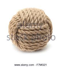 monkey ornamental knot isolated on white background stock