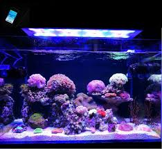 led lights for coral tanks bluetooth control led light coral grow marine reef tank white blue