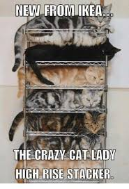Funny Cat Lady Memes - new from ikea the crazy cat lady high rise stacker cats meme on