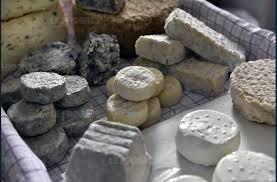 ent de cuisine haut haute loire des fromages de chèvre contaminés par la bactérie e choli