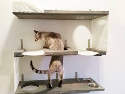 Kitchen Wall Shelves by Wall Shelving For Cats Pennsgrovehistory Com