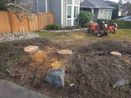 Backyard Bites Bothell Wa Stump Removal Another Stump Bites The Dust Jay U0027s