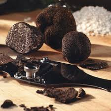 italian truffles price italian truffles best offer italin fresh truffles