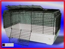 Rabbit Hutches For Indoors Amazon Com Bunny Xl Indoor Rabbit Cage Large Bunny 100cm Xl