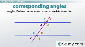 angles formed by a transversal video u0026 lesson transcript study com