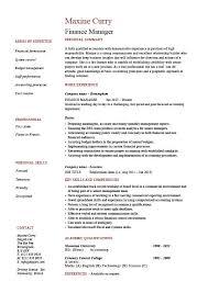 executive resume exles executive resume design novasatfm tk